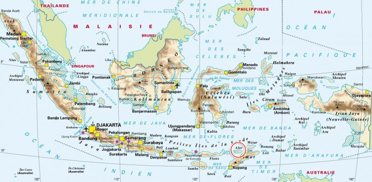 Maps Alor Diving Kepa